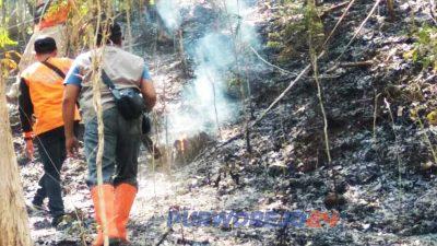 Kebakaran lahan di Semagung, Bagelen. (27/10/2019)