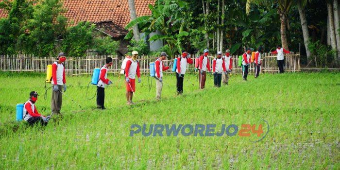 Penyemprotan masal di Desa Tunjungan Kecamatan Ngombol, Kamis (14/05/2020).