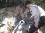 Petugas polsek Bener memeriksa sosok benda yang awalnya diduga mayat bayi.