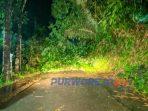 Jalan Purworejo-Banyuasin yang terttutup tanah longsor dan pohon tumbang. (12/1/2021)