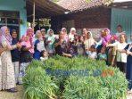Nucare - LazizNu bagi-bagi sayuran di dua desa di Kabupaten Purworejo